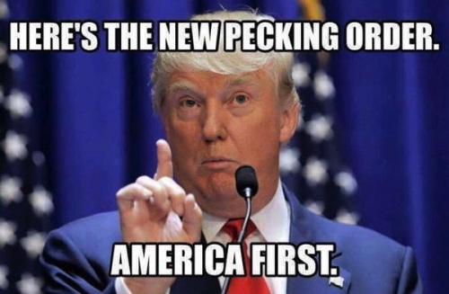 trump-pecking-order